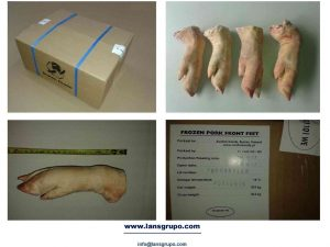 Frozen Pork Meat Suppliers