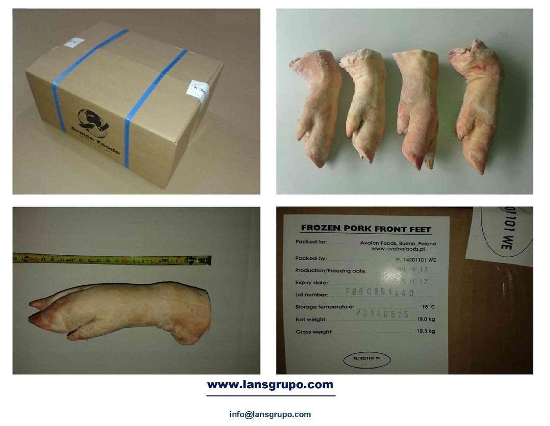 Frozen Pork Meat Suppliers - Wholesale Pork Meat & Pork Cuts - Lan Grupo