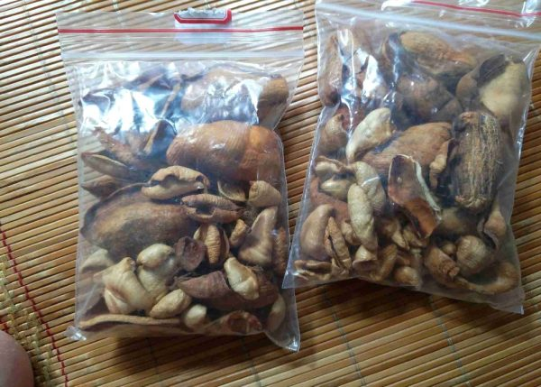 Pangolin Scales Wholesale
